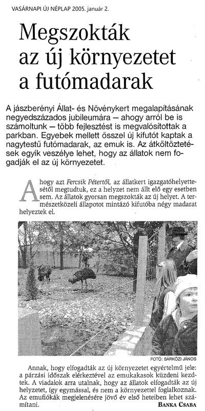 175_20050102_vasarnapi_uj_neplap.tif