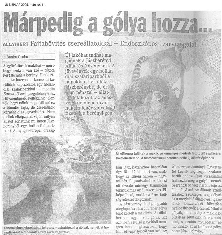 185_20050311_uj_neplap.tif